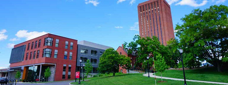 University of Massachusetts - Amherst