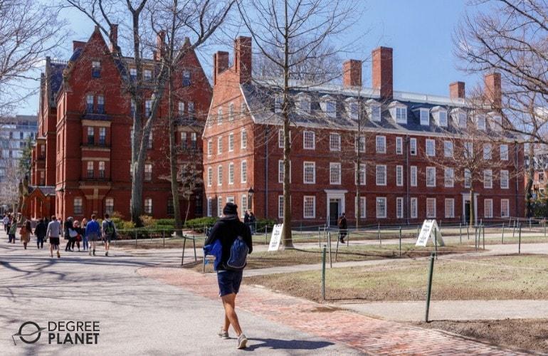 Harvard university campus during spring