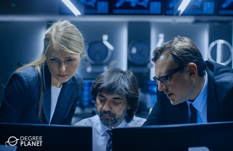 Information Security Analysts working for government