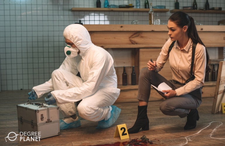 Criminal Investigator working on the crime scene