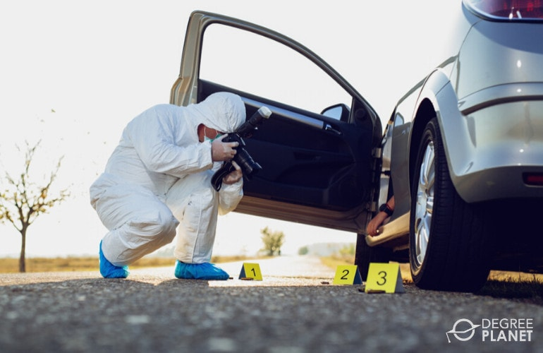 bachelors degree in forensic science